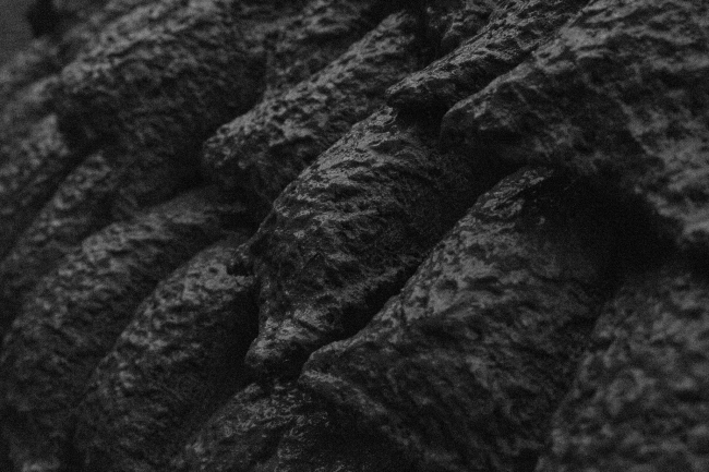 Mud Shell © Stephanie Chaltiel, Rosie Marks