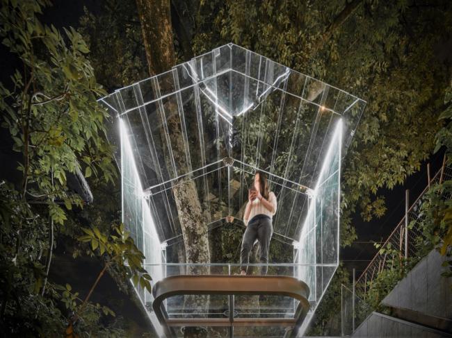 Crystal Treehouse © Alexander de La Roche. Предоставлена бюро BROISSIN