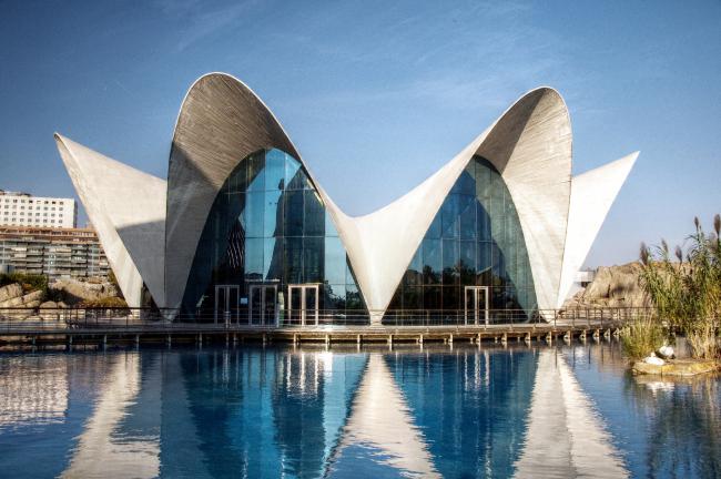 Океанариум в Валенсии, архитектор Феликс Кандела. Лицензия CC BY 2.0. Автор Felipe Gabaldón from Spain