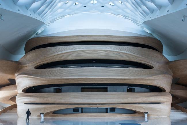 Поощрительная премия SIPA 2018. «Харбинский оперный театр» (Харбин, Китай) © Эдриан Баракат (Швейцария) / Adrien Barakat