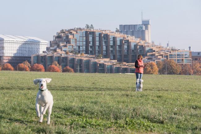 Жилой комплекс 79&PARK. Фото © Laurian Ghinitoiu