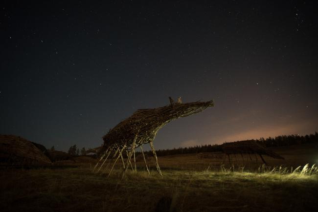 © Николай Полисский. «Священный табун мистических лошадей». Якутия, V биеннале современного искусства