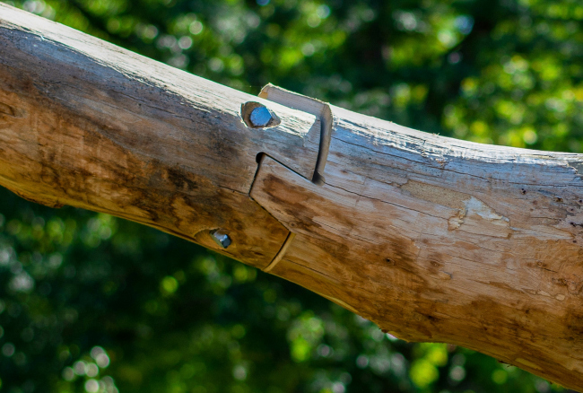 LOG KNOT. Фотография © Jeremy Bilotti
