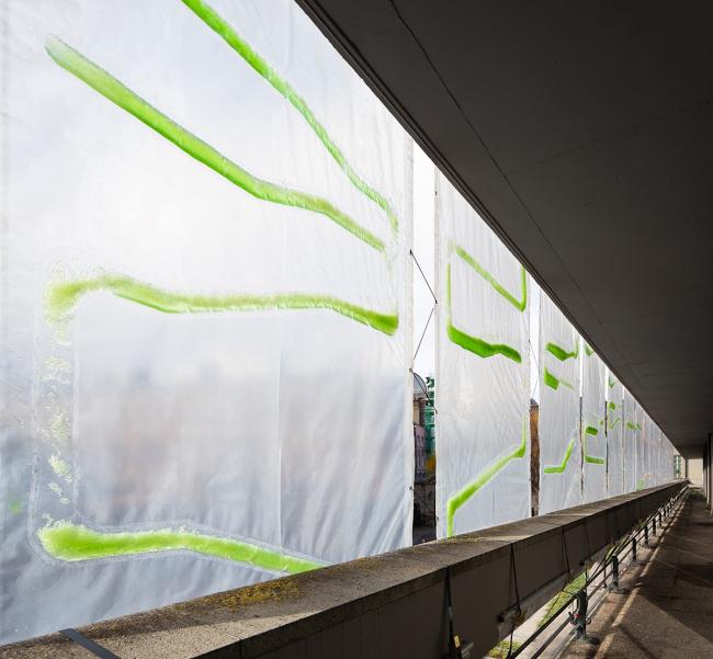 PhotoSynthEtica. Проект ecoLogicStudio. Фотография © NAARO