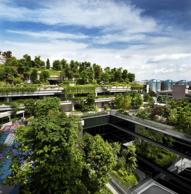 """Обладатель премии """"World Building of the Year 2018« – жилой комплекс »Kampung Admiralty"""" в Сингапуре. Бюро WOHA. Фотография предоставлена пресс-службой WAF-2018"""