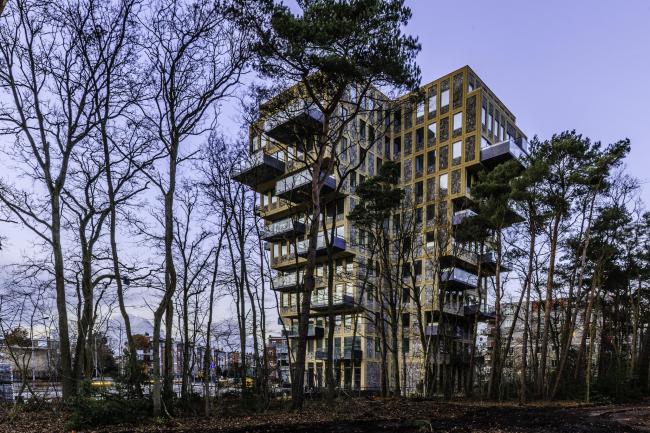 Башня Belvedere © Peter van Mierlo Foto-impressies