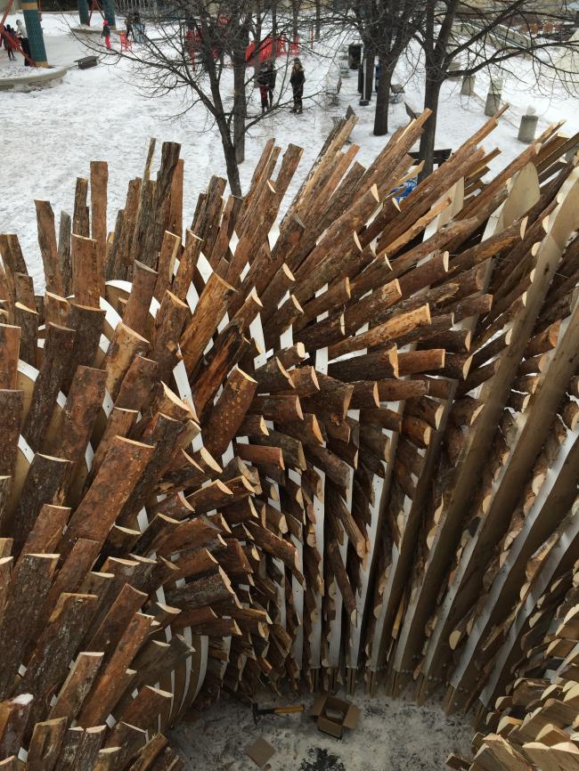 Павильон Hybrid Hut в Виннипеге. Фото ©  Rojkind Arquitectos