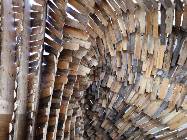 Павильон Hybrid Hut в Виннипеге. Фото © Rojkind Arquitectos, фотограф Michel Rojkind