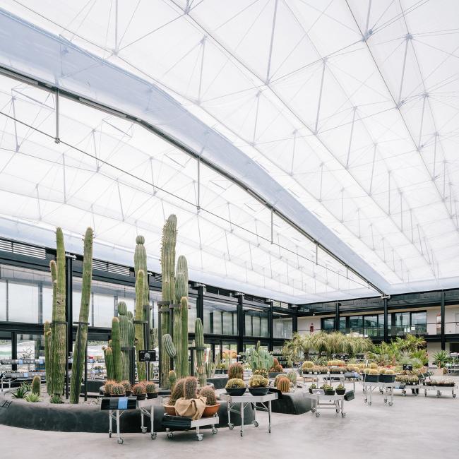 Многофункциональный комплекс Desert City. Фотография © Imagen Subliminal