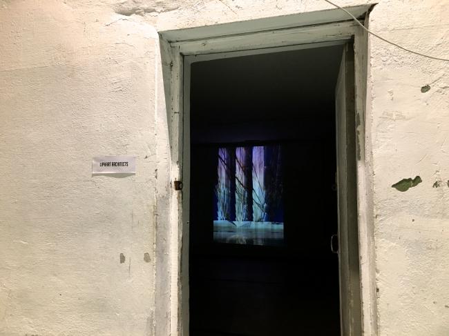 Инсталляция бюро Liphart Architects. Выставка «Мир архитектуры и дизайна», 2019