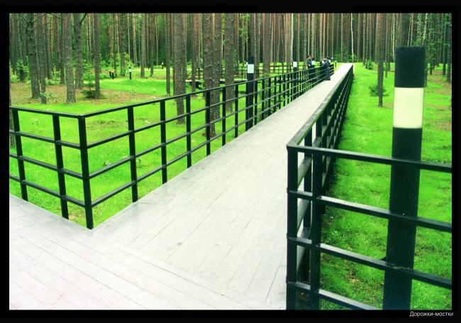Парк памяти, скорби и покаяния в Катынском лесу © ПТАМ Хазанова