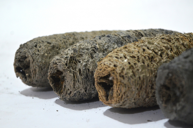 «Зеленый древесный уголь», автор проекта: Шреяс Мор. Проба различных смесей