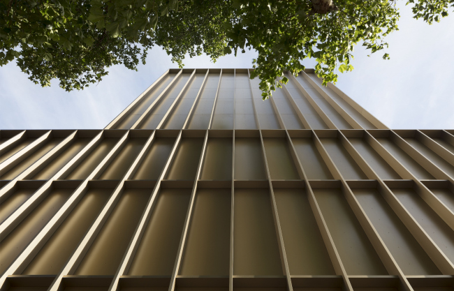 Театр LAMDA, Лондон.  Niall McLaughlin Architects