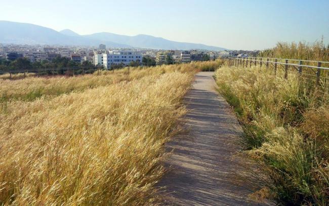 Этот путь ведет от террасы на крыше, через травяную крышу Национальной библиотеки, к большому парку