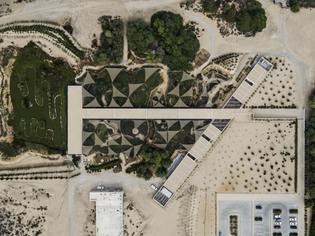 Центр водно-болотных угодий «Васит» С высоты птичьего полета