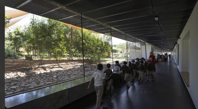 Центр водно-болотных угодий «Васит». Смотровая галерея