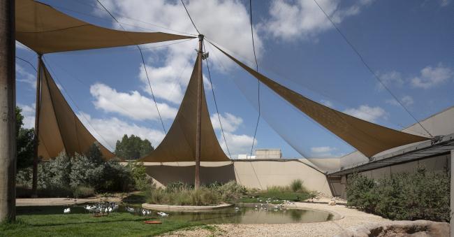 Центр водно-болотных угодий «Васит». Часть вольера