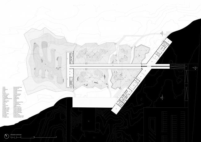 Центр водно-болотных угодий «Васит». План