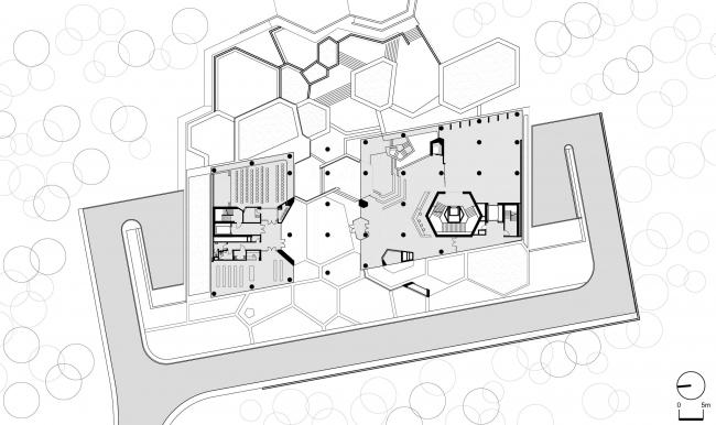 Музей и центр биоразнообразия университета Хаджеттепе