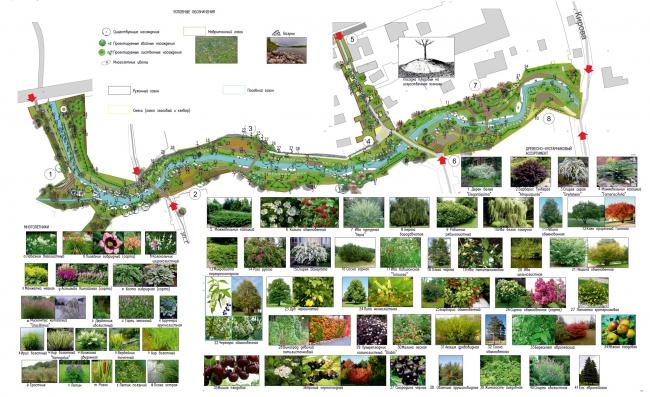 Схема озеленения. Набережная реки Тюлячка