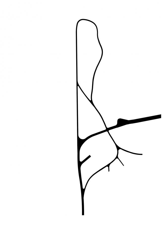 Велотропа и пешеходная артерия. Проект развития территории Мытищинской Ярмарки