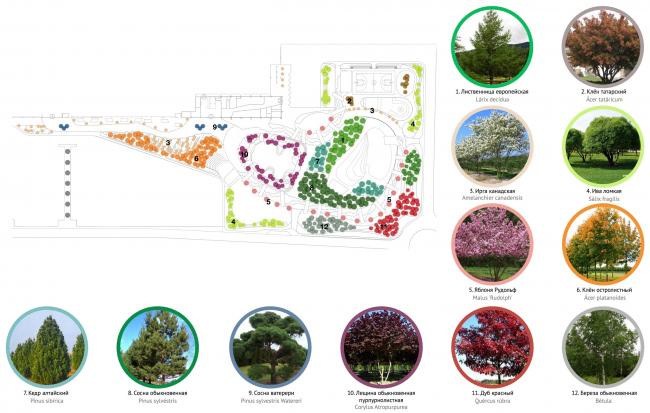 Карта озеленения. Парк Yurack Idel (парк Сердечная река)