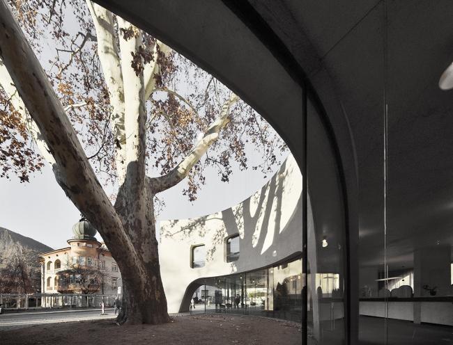 Туристический информационный центр TreeHugger