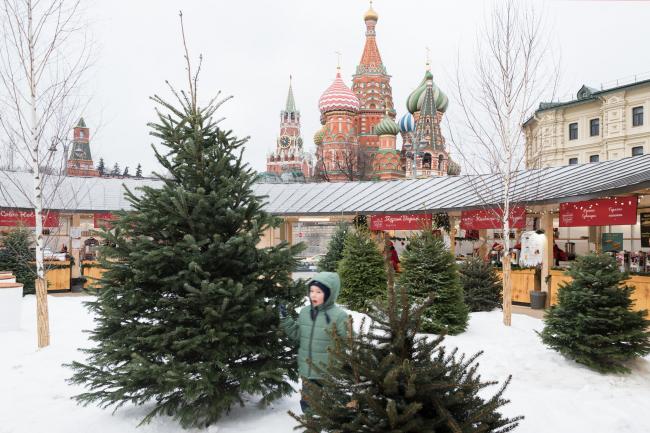 Вид со двора на Собор Василия Блаженного.  Павильон Снегосад в Зарядье