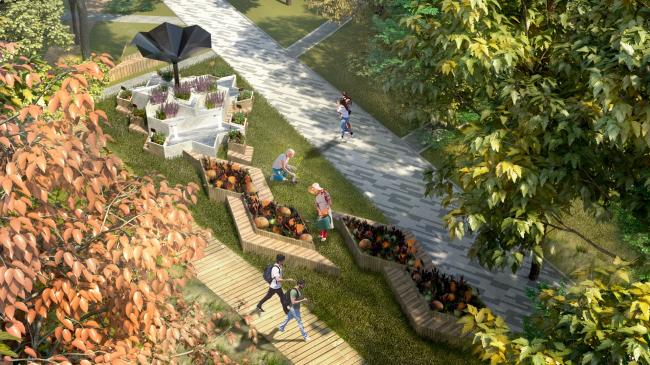 Вид на клумбы с цветами. Проект медико-оздоровительного центра и благоустройство парковой зоны «Бринкманский сад»