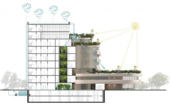 Схема разреза, показывающая возможности энергоэффективного здания. Проект медико-оздоровительного центра и благоустройство парковой зоны «Бринкманский сад»