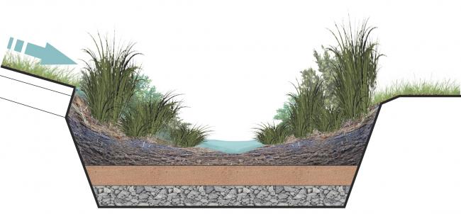 Схема разреза приема дождевого сада, примененного в парке для сбора дождевой и талой воды. Проект медико-оздоровительного центра и благоустройство парковой зоны «Бринкманский сад»