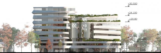 Фасад 2. Проект медико-оздоровительного центра и благоустройство парковой зоны «Бринкманский сад»
