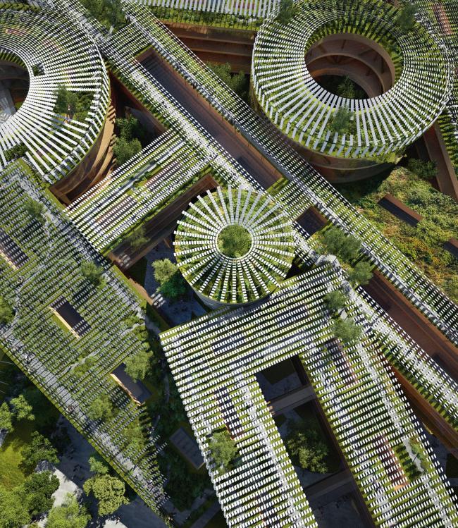 Вид на крыши. Концепция развития территории Охтинского мыса