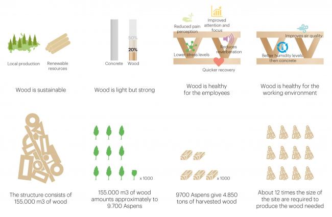 Деревянная структура. Концепция развития территории Охтинского мыса