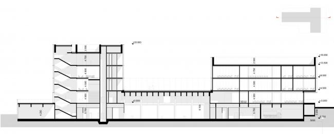 Разрез 1-1. Школа «Новый взгляд» в составе ЖК «Садовые кварталы», 2020