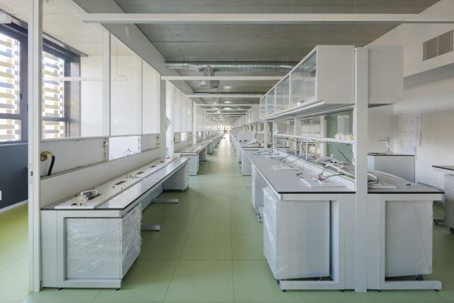 Исследовательский институт больницы Сан-Пау