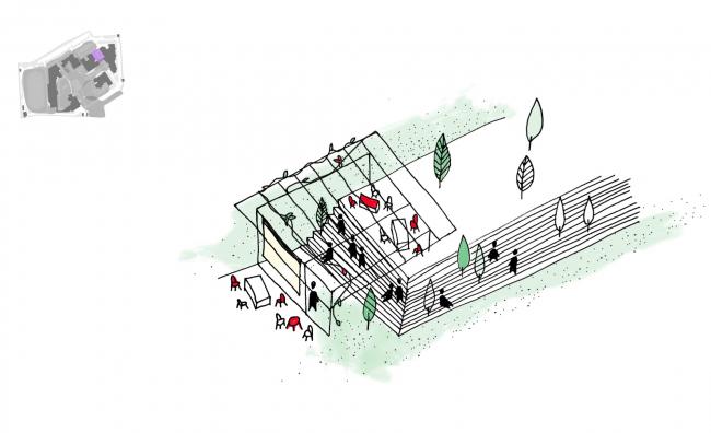 Уличный лекторий. «Зеленый сад», проект развития территории Павловской гимназии