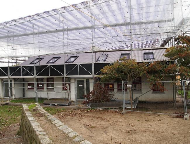 Школа Лангеберга в процессе реконструкции