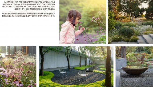 Сенсорный сад. Городские резиденции «Spires»