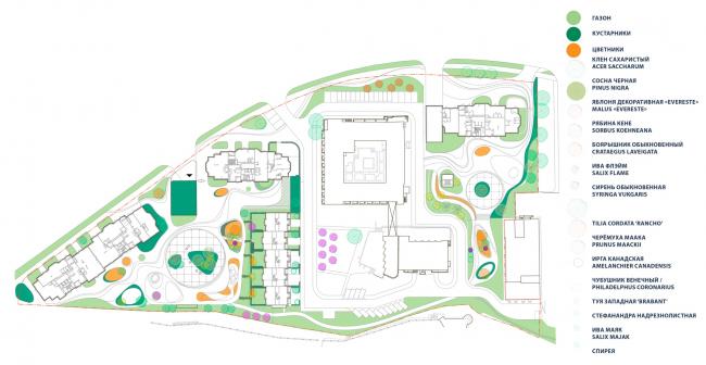 Схема озеленения. Городские резиденции «Spires»