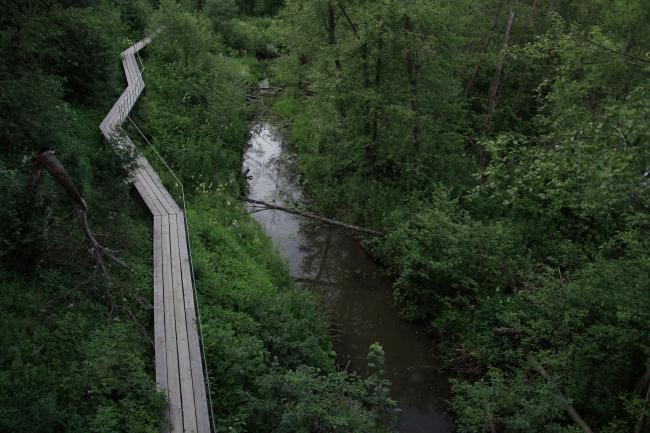 Парк Александра Бродского в Веретьево. Вид из Обсерватории