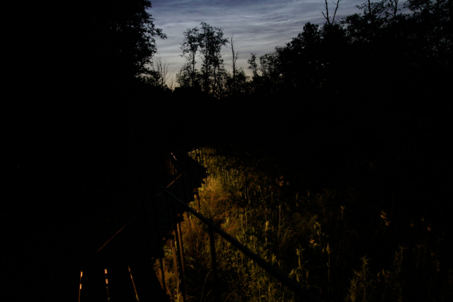 Вид от Обсерватории. Парк Александра Бродского в Веретьево