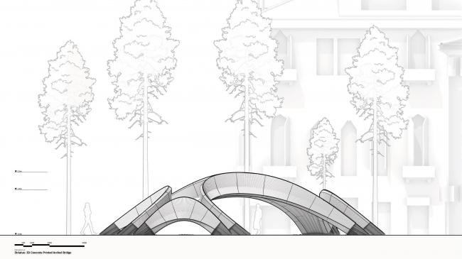 Мост Striatus
