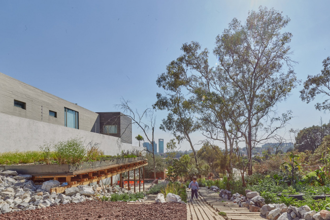 Общественный эко-сад и образовательный центр El Terreno