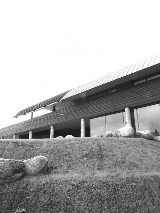 Дом «Бунгало» в поселке Первомайское © Архитектурное бюро АрДепо