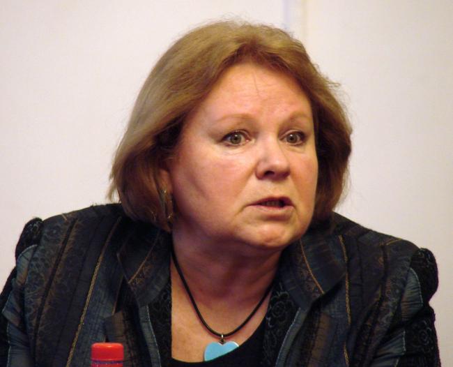 Руководитель комиссии союза архитекторов России по сохранению архитектурного и градостроительного наследия Ирина Маркина