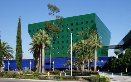 «Зеленое здание» (1988)
