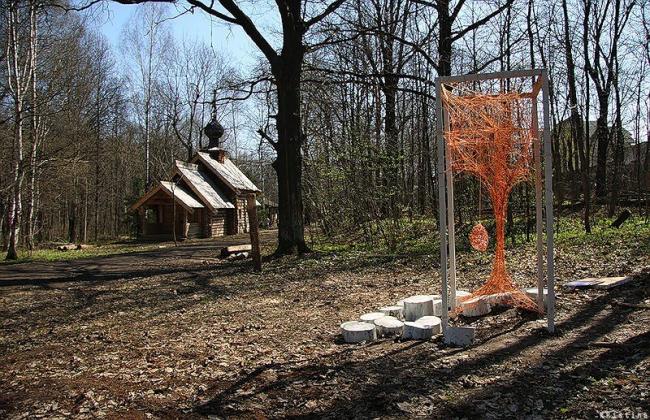 """""""О′город«: »Дерево"""". Фотография Кристины Разумовой"""