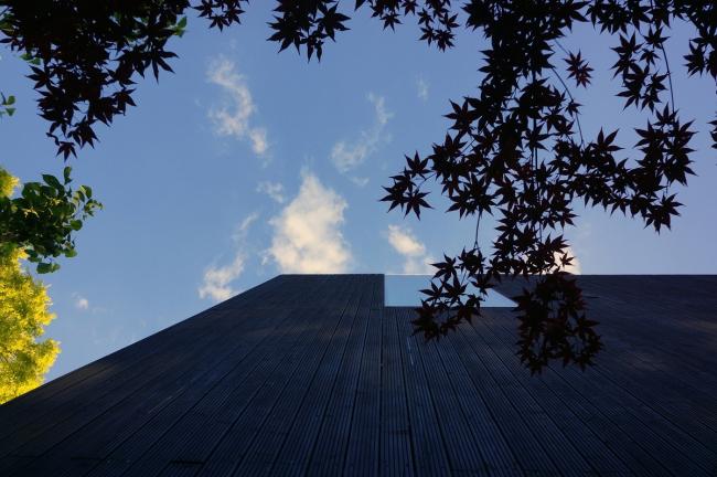 Дом Sunken House. Фото: Neil MacWilliams via flickr.com. Лицензия CC BY-ND 2.0