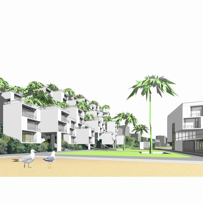 29 PALMS, Черногория (Twentynine Palms Housing & Hotel, Herceg Novi) © Купцов, Гикало и партнеры